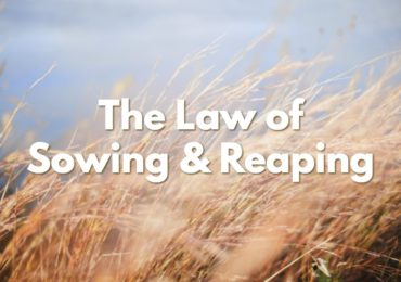 The Law of Sowing & Reaping